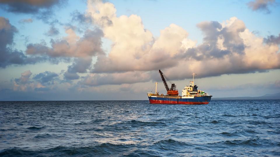 FISHING BOAT - MX2 GLOBAL