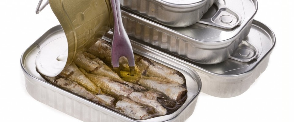 CANNED SARDINES - MX2 GLOBAL